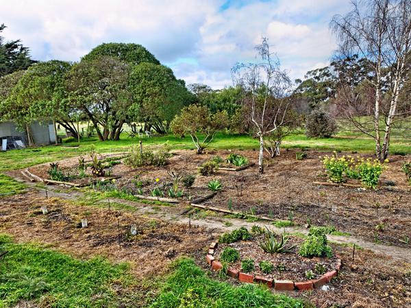 garden-14mm.jpeg