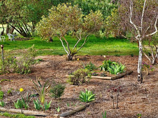 garden-42mm.jpeg