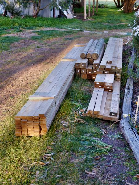 timber.jpeg