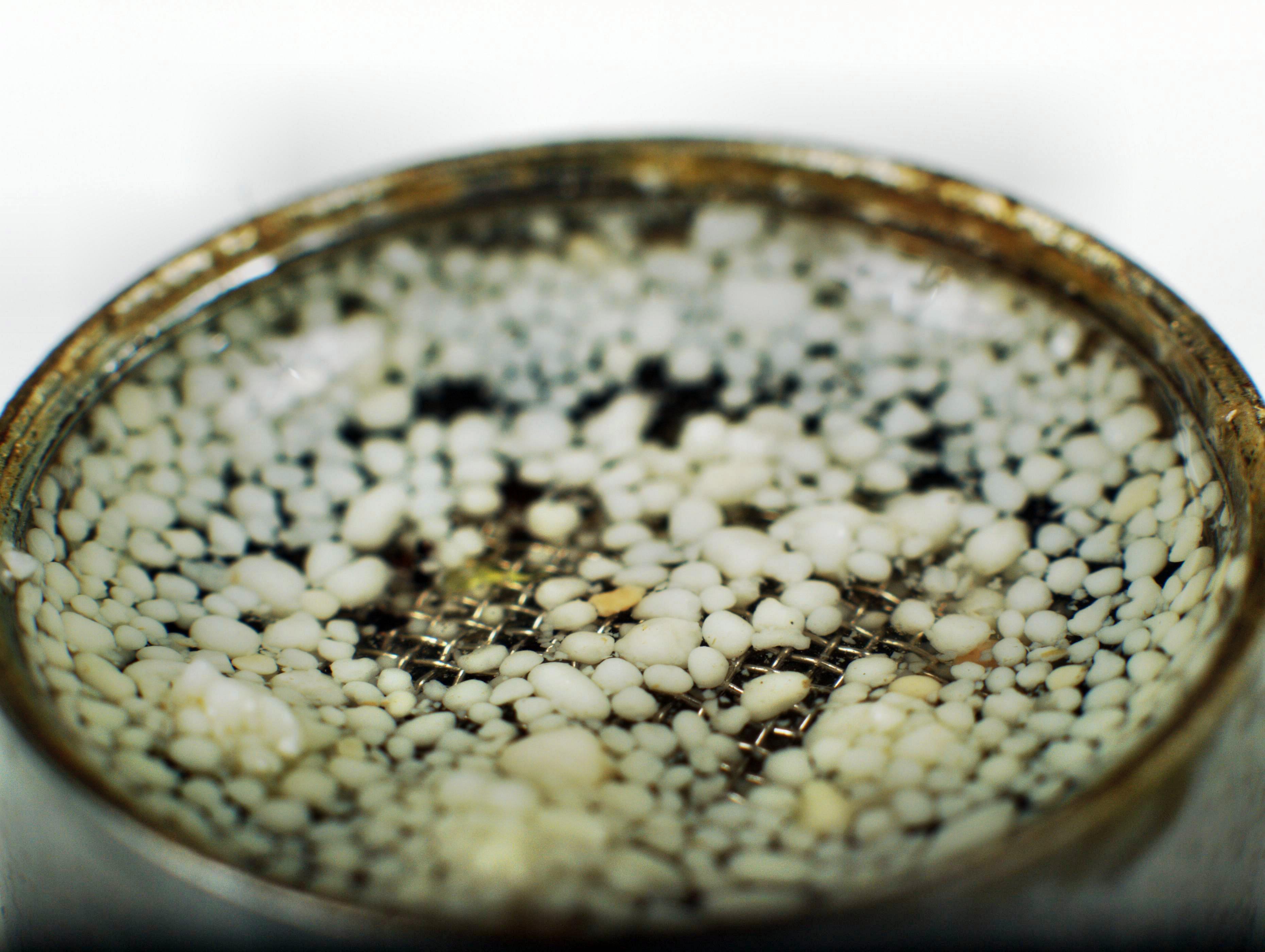 granules-2.jpeg