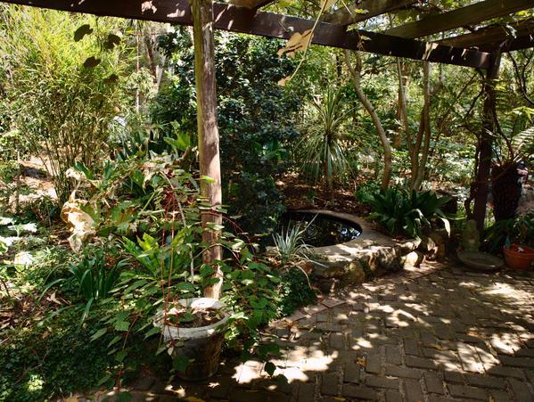 ryans-garden-12.jpeg