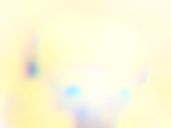 olympus-300+3x-11-detail.jpeg