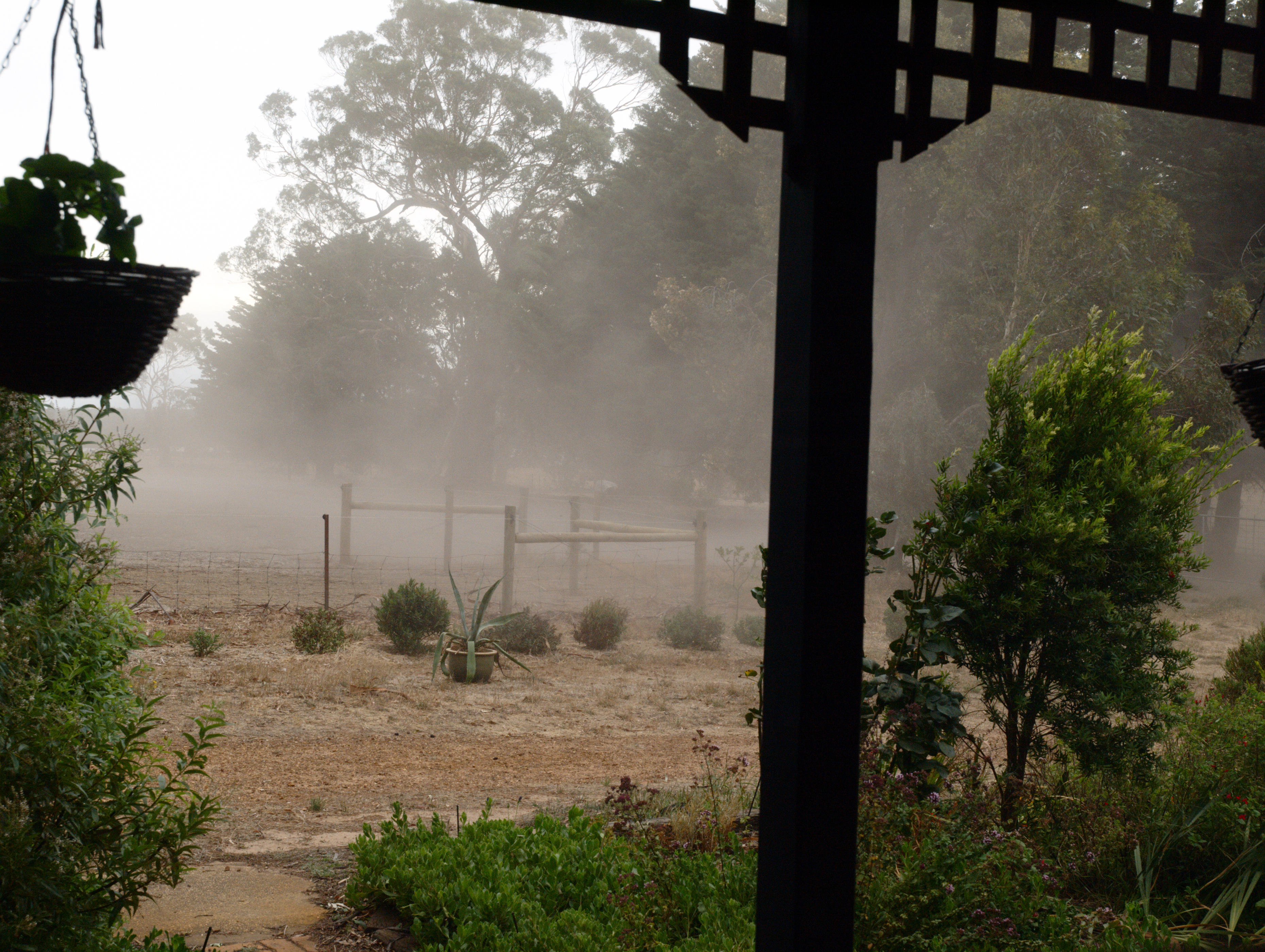 dust-storm-1.jpeg