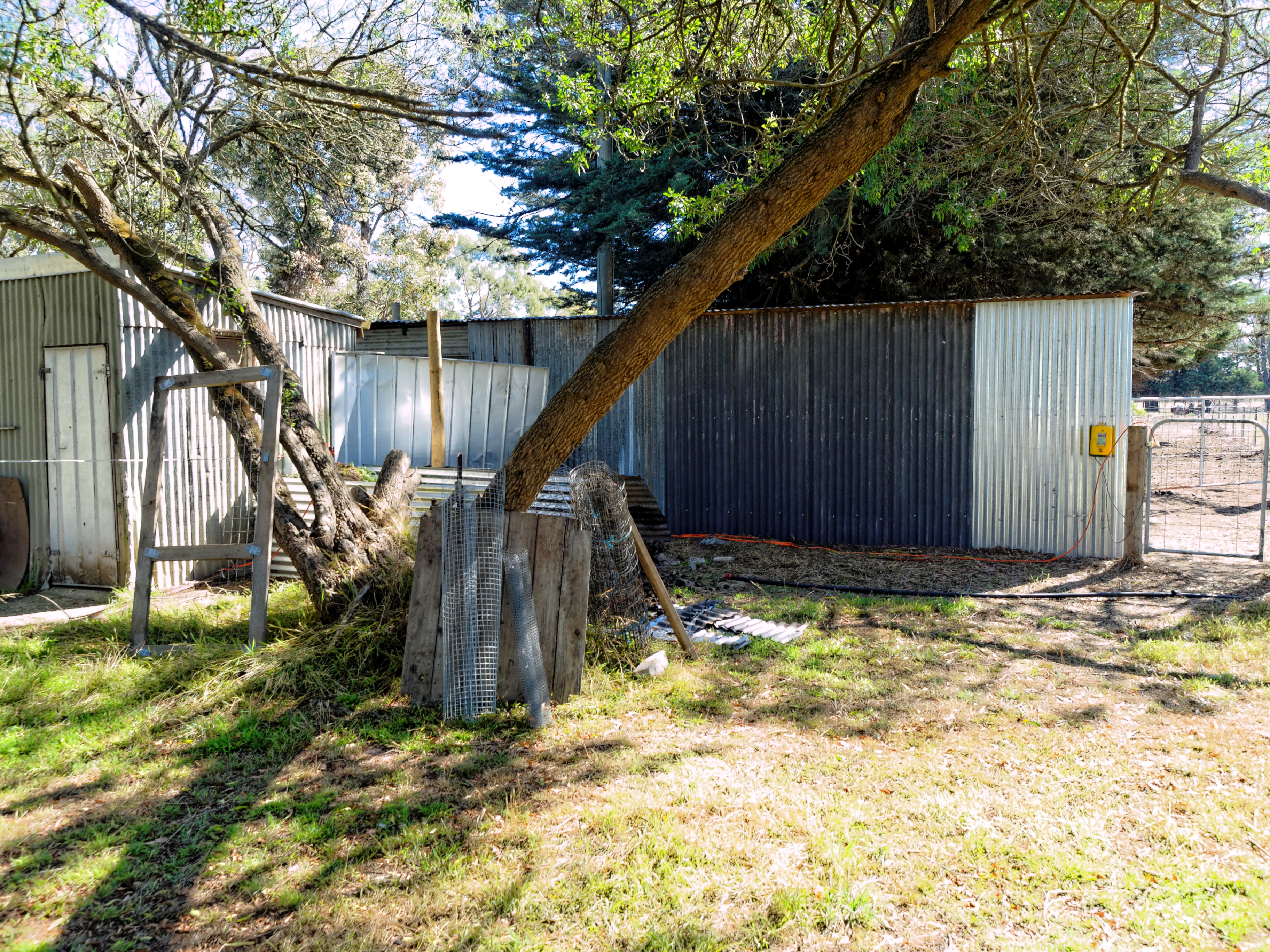 shed-5.jpeg
