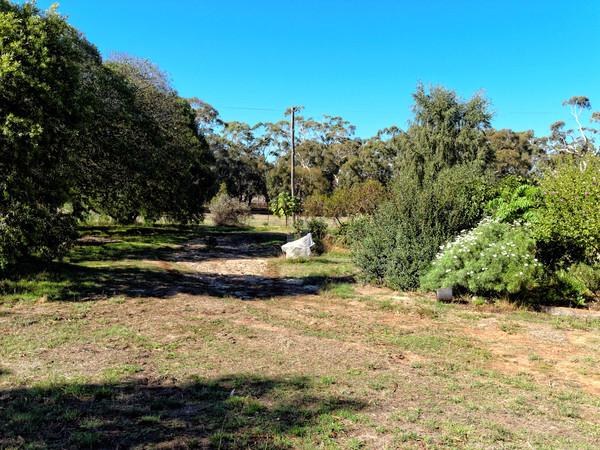 garden-9.jpeg