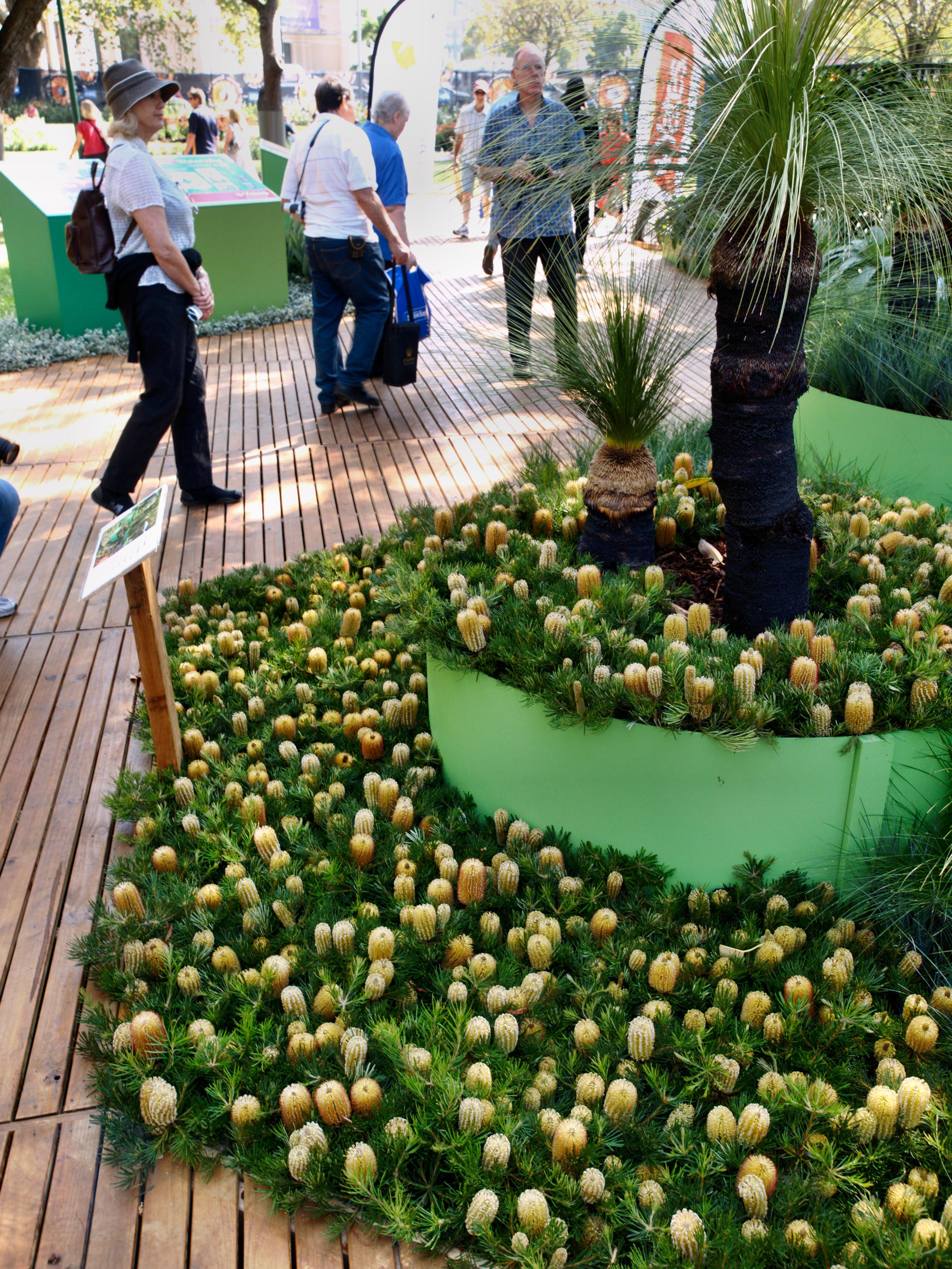 Garden-show-4.jpeg
