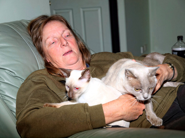 Yvonne-cats-2.jpeg