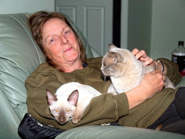 Yvonne-cats-3.jpeg