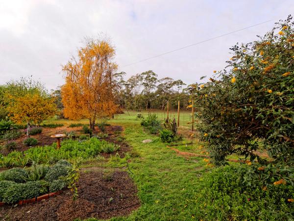 garden-e-wide.jpeg