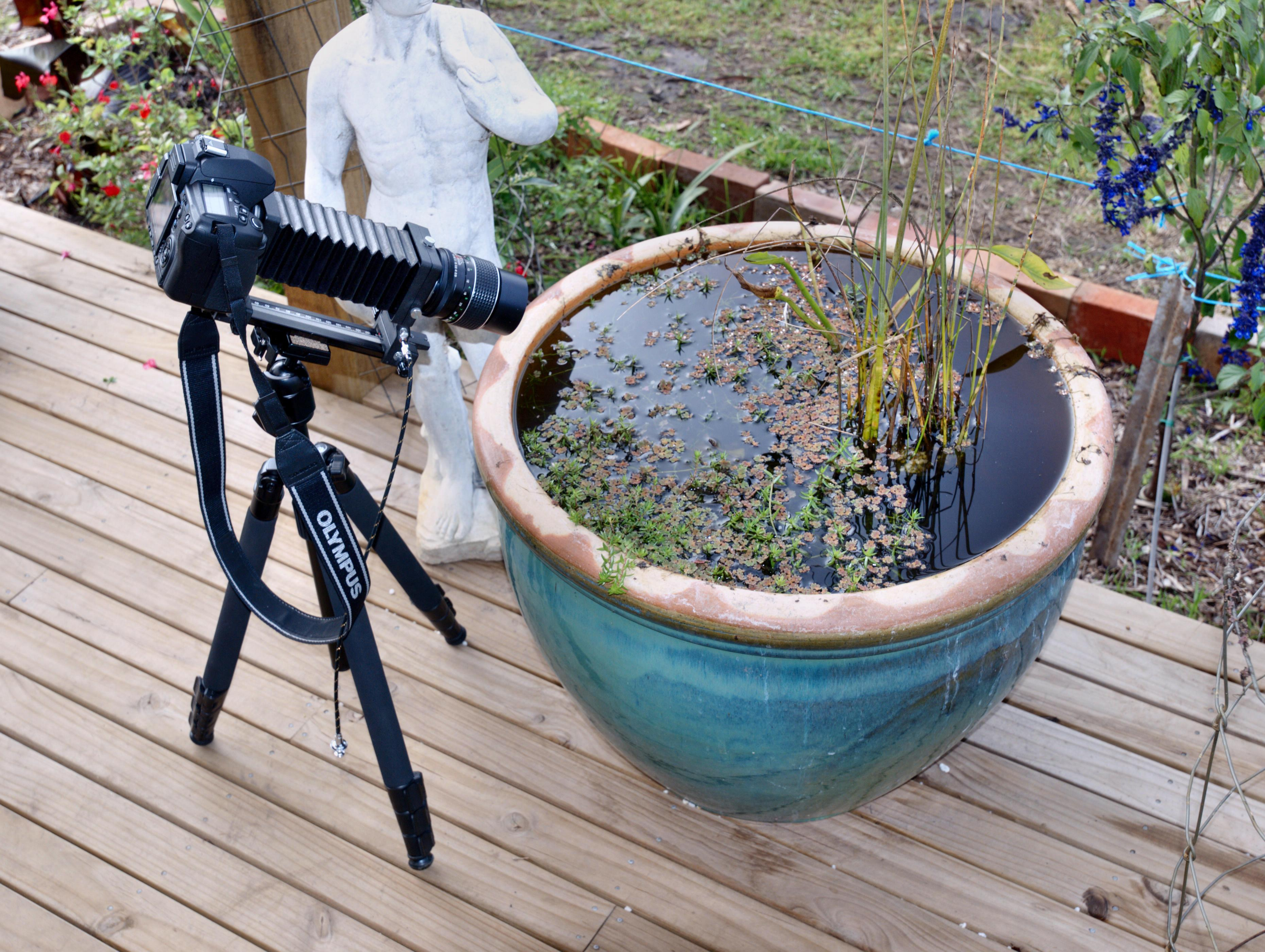 Photo-setup.jpeg