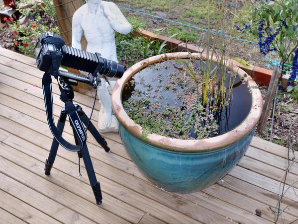Photo-setup.jpeg