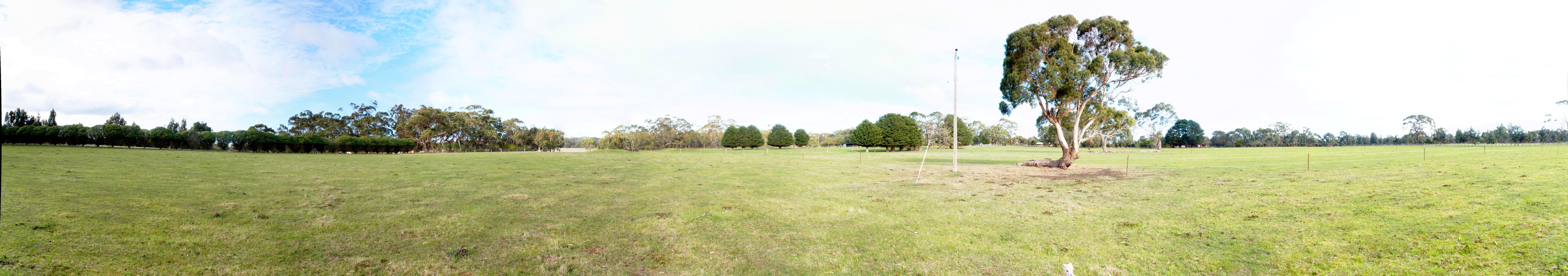 ne-paddock-panorama.jpeg