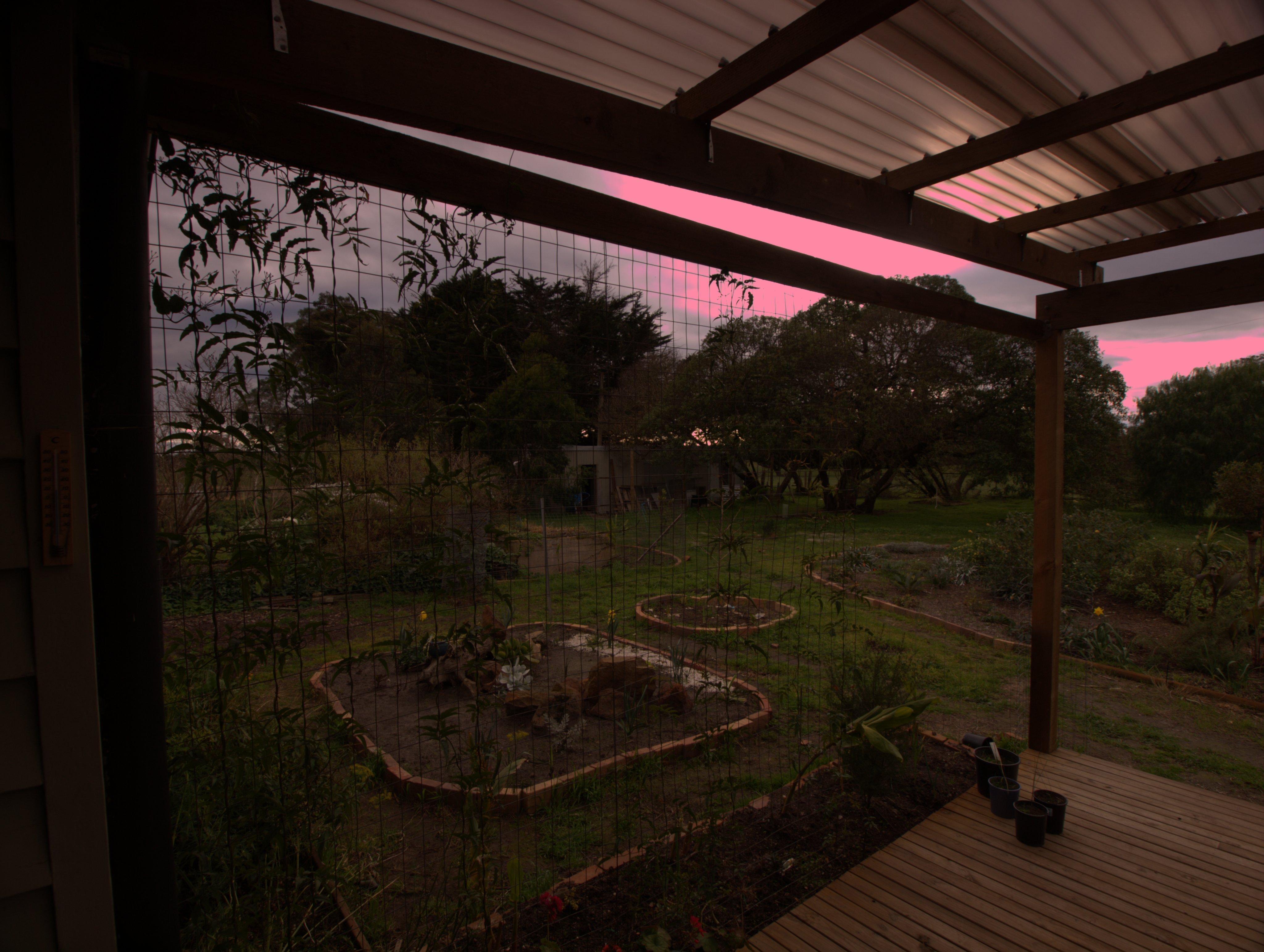verandah-1-dcraw.jpeg