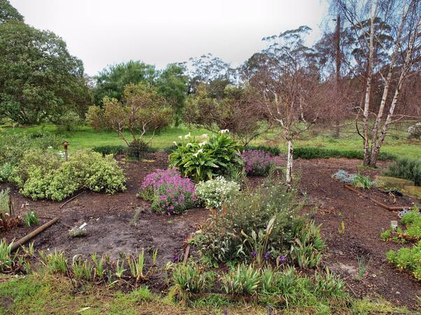 Garden-after.jpeg