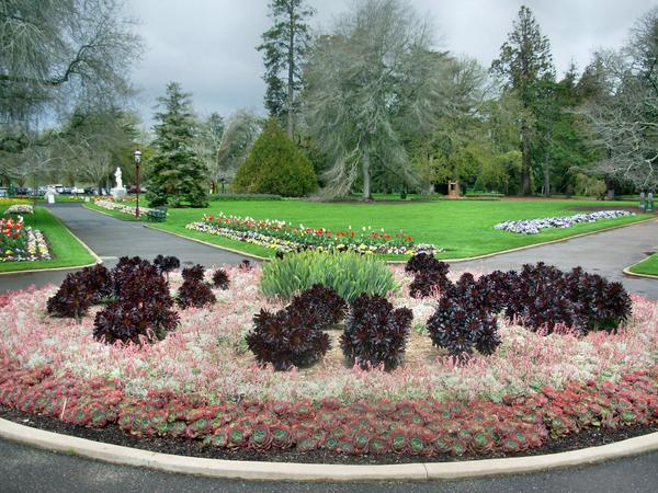 Botanic-Gardens-10.jpeg