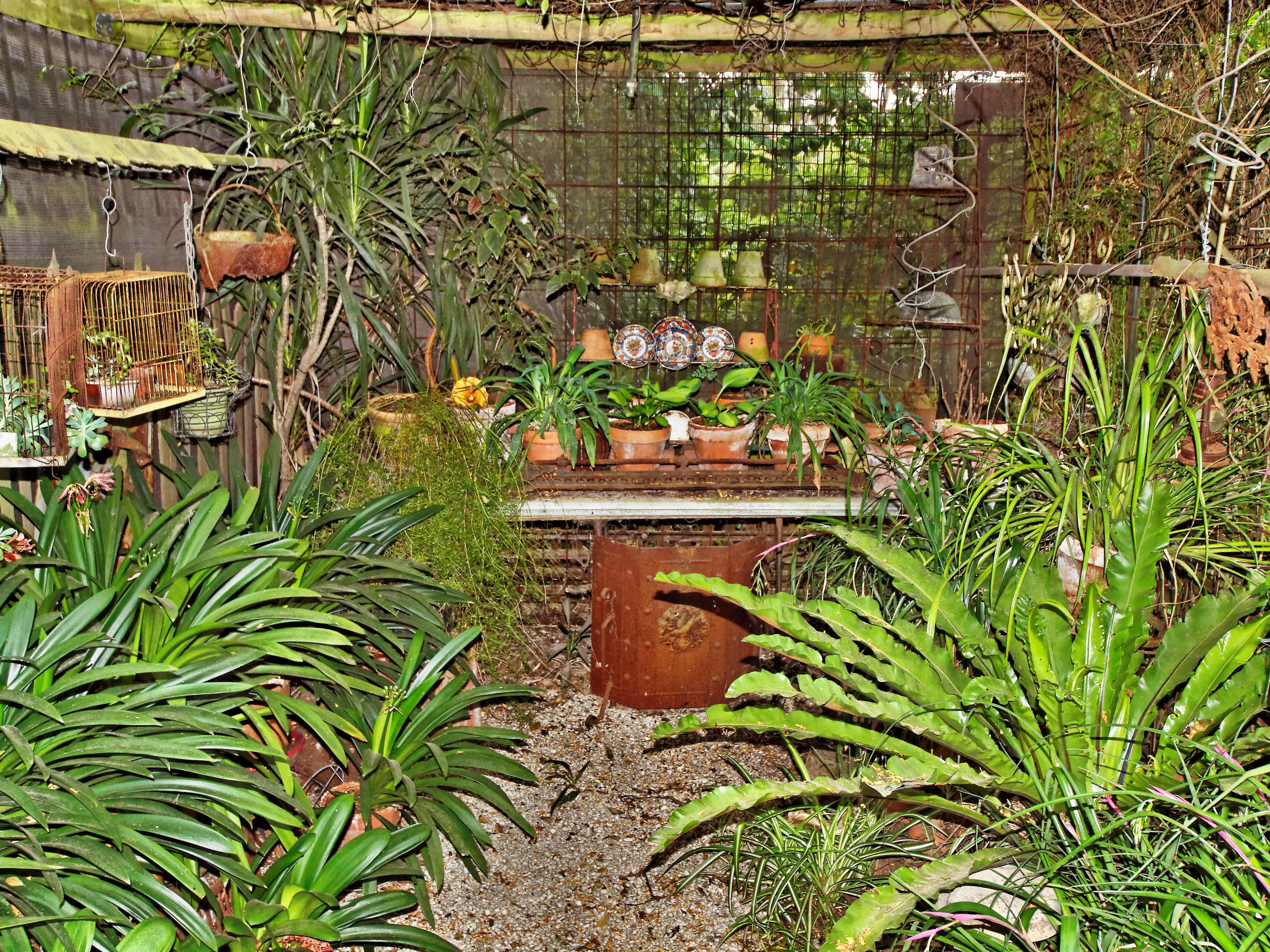 Garden-1-3.jpeg