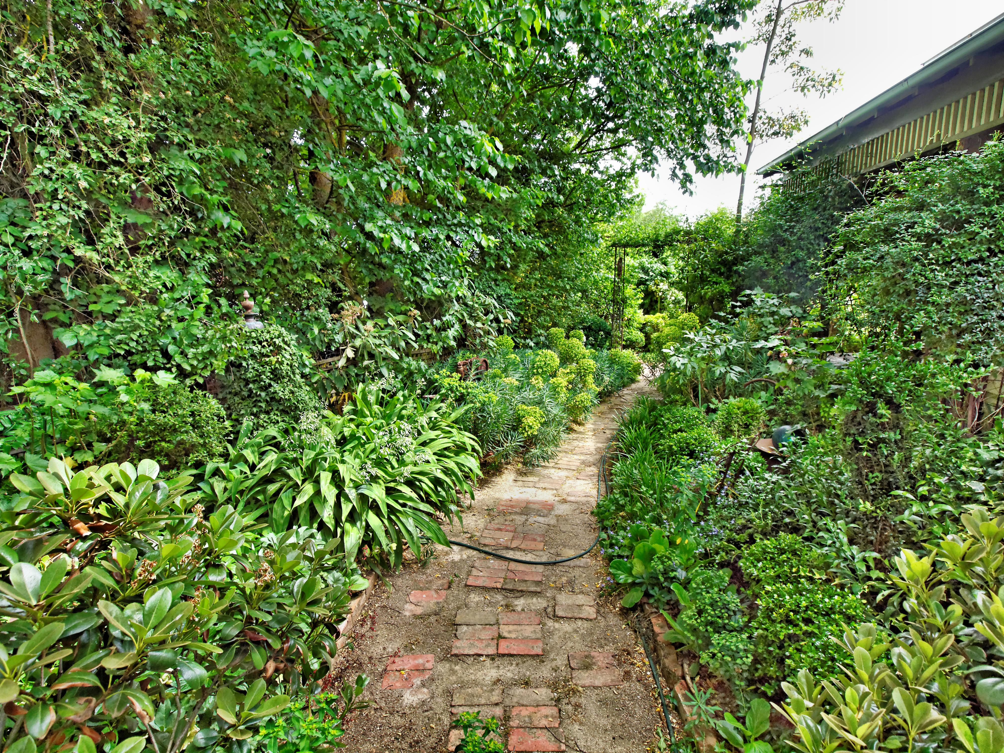 Garden-1-5.jpeg