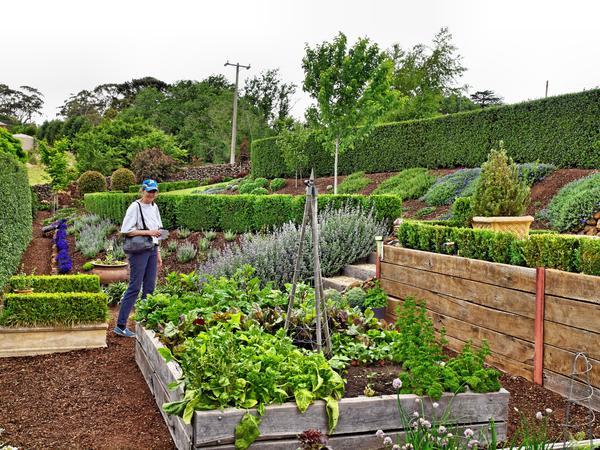 Garden-2-1.jpeg