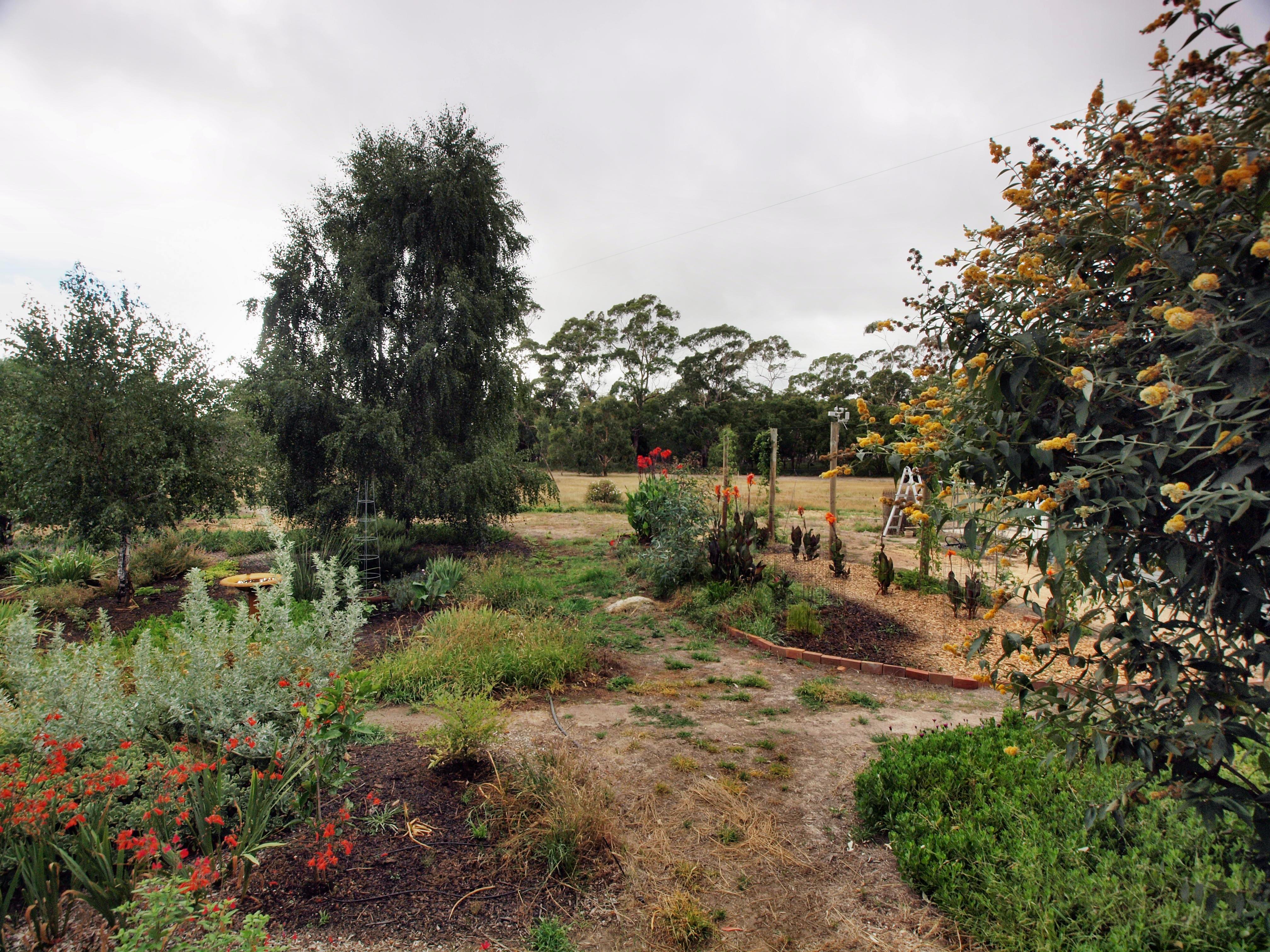 garden-e-2.jpeg