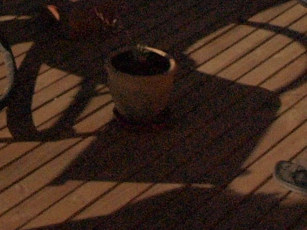 This should be Blue-moon-verandah-5-old-orig-detail.jpeg.  Is it missing?