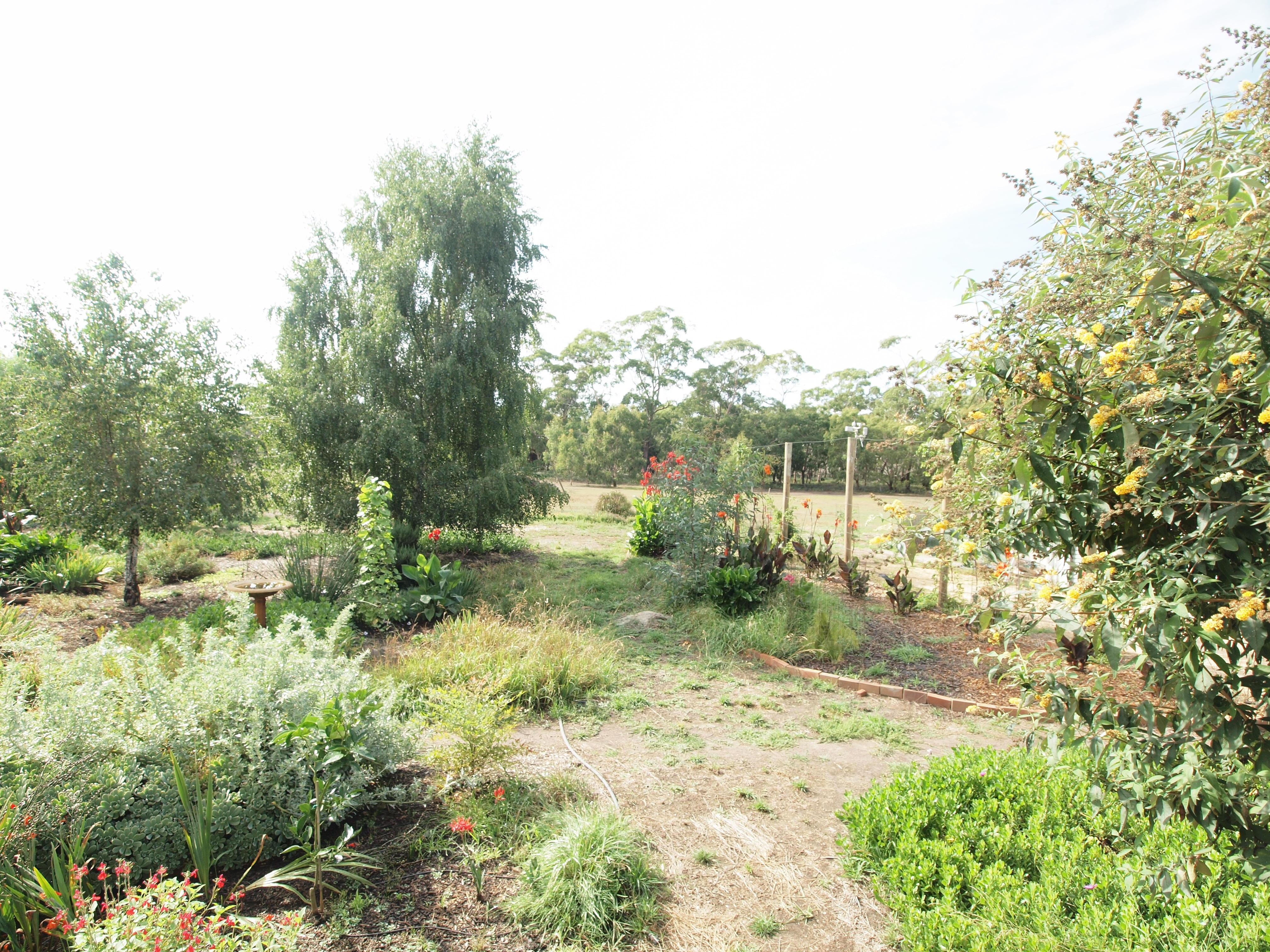 garden-e+2EV.jpeg