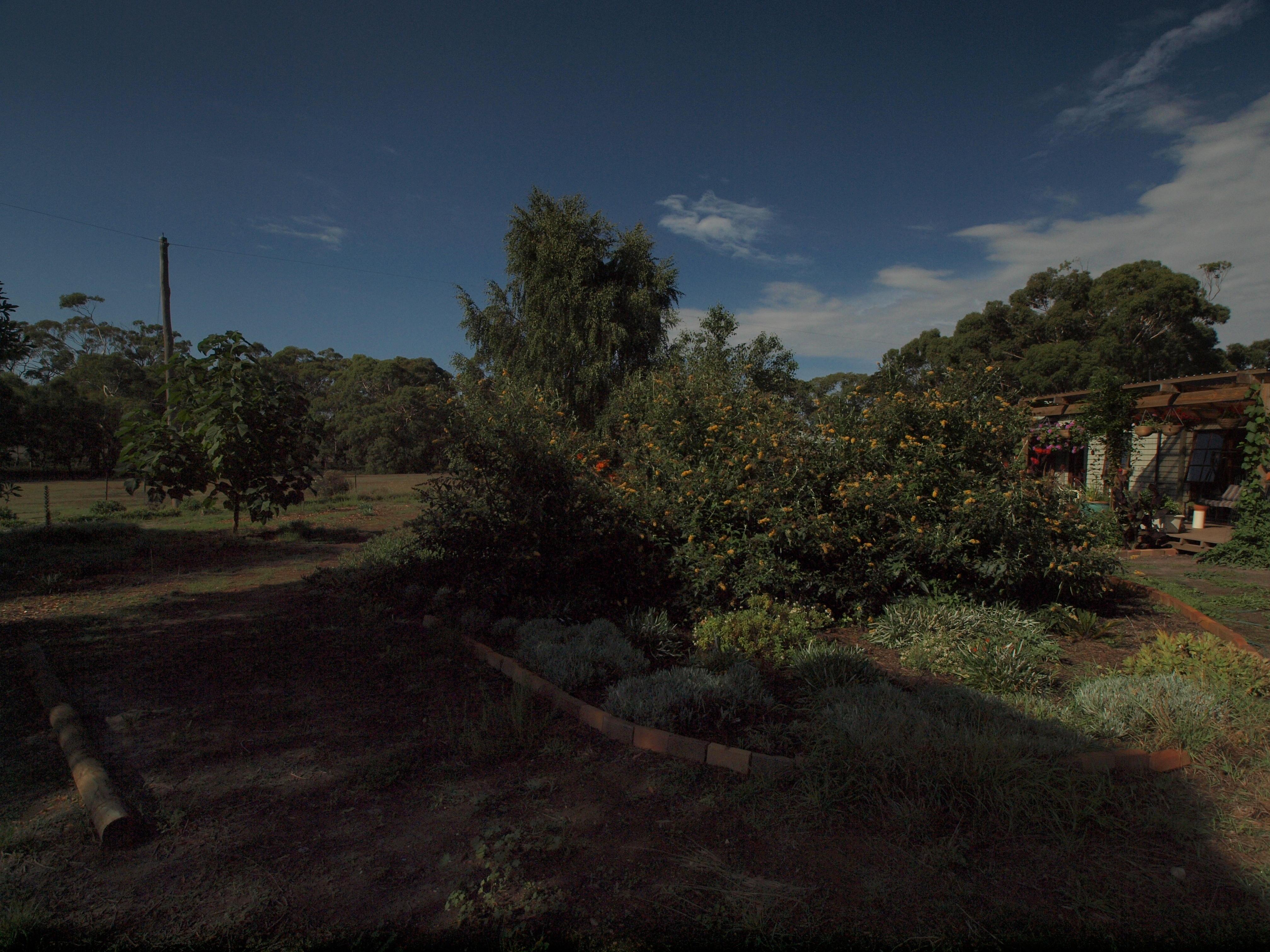 garden-ne-b-2EV.jpeg
