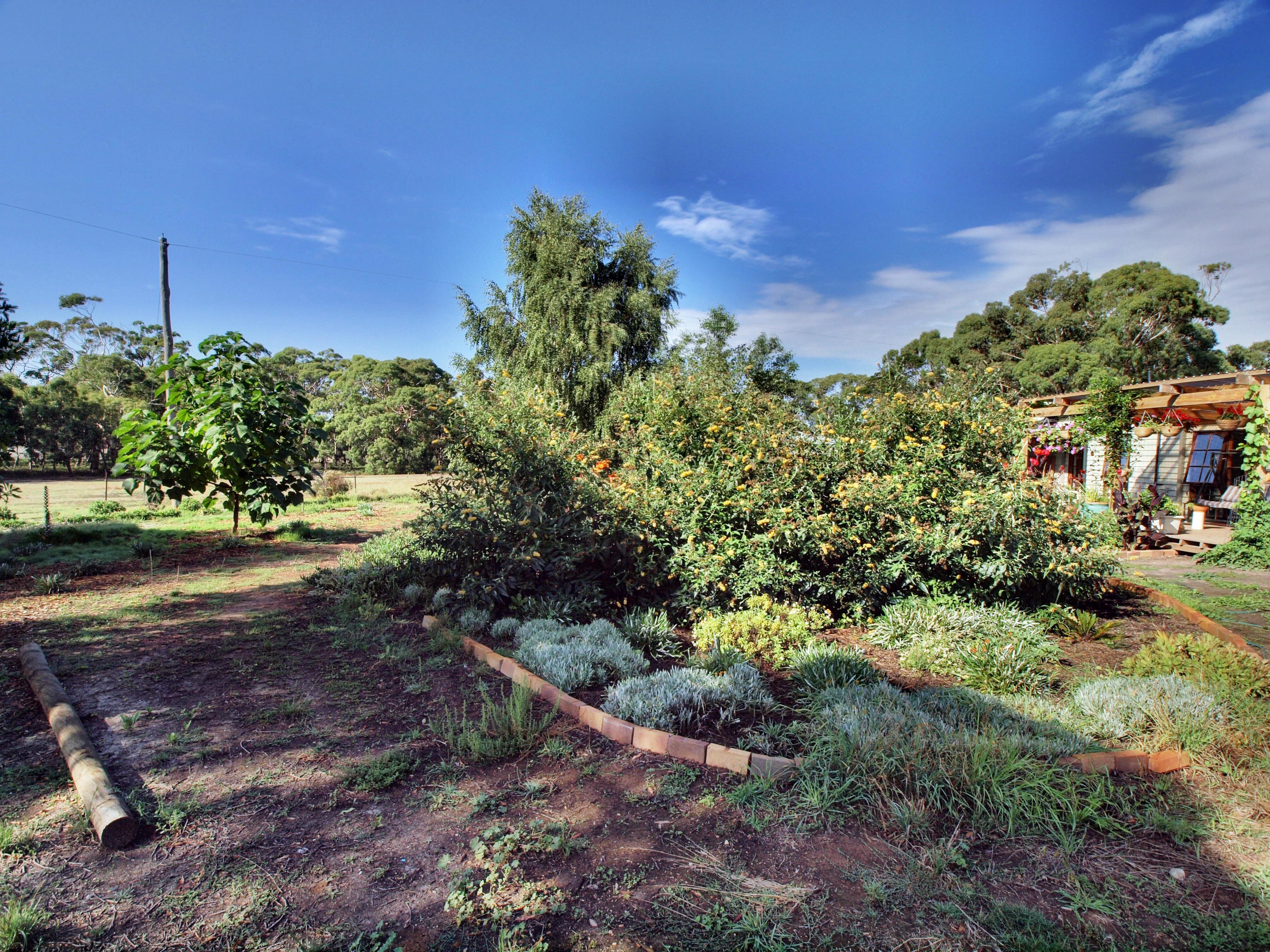 garden-ne-b.HDR.jpeg