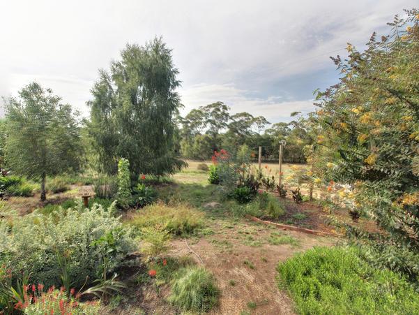 garden-e-HDR.jpeg