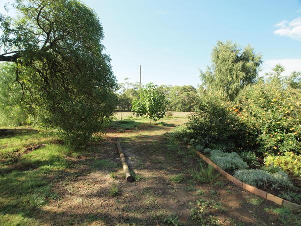 garden-ne-a+2EV.jpeg