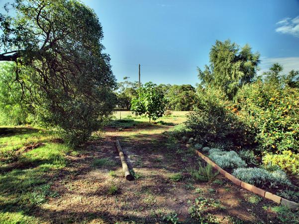 garden-ne-a.HDR.jpeg