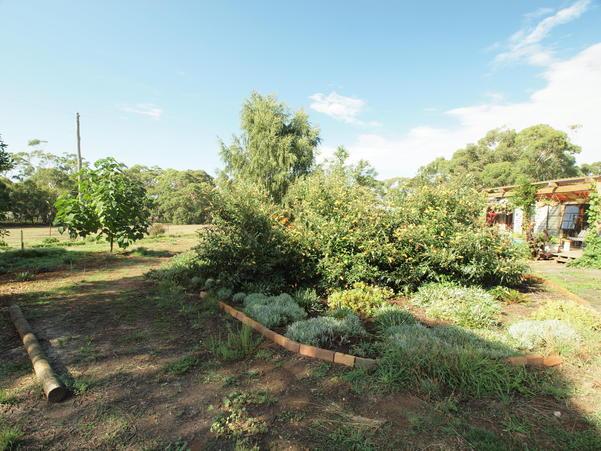 garden-ne-b+2EV.jpeg