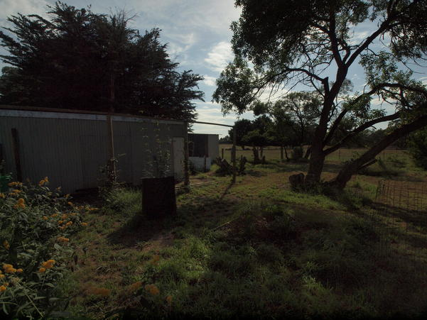 garden-ne-i-2EV.jpeg