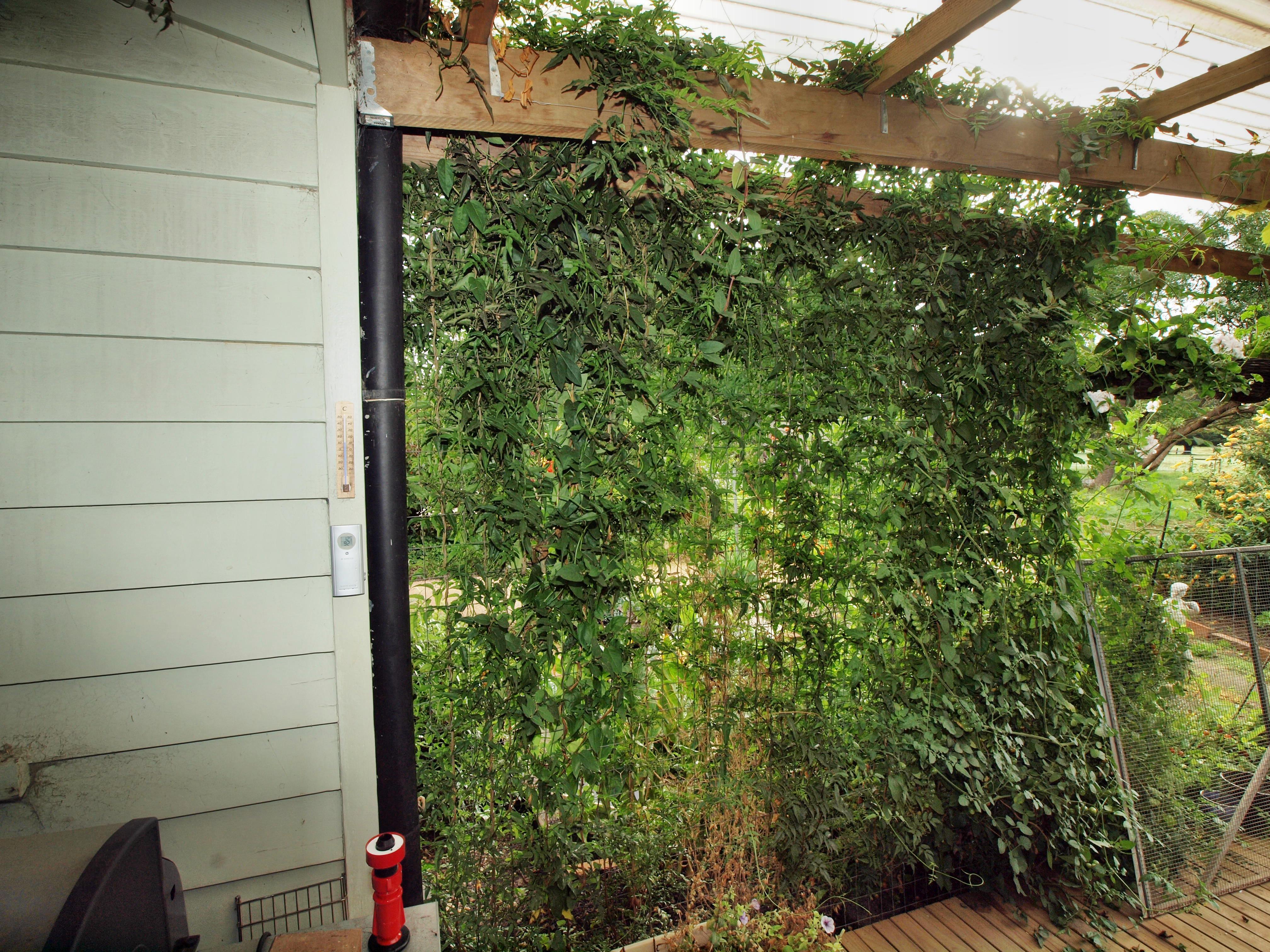 verandah-2-2.jpeg