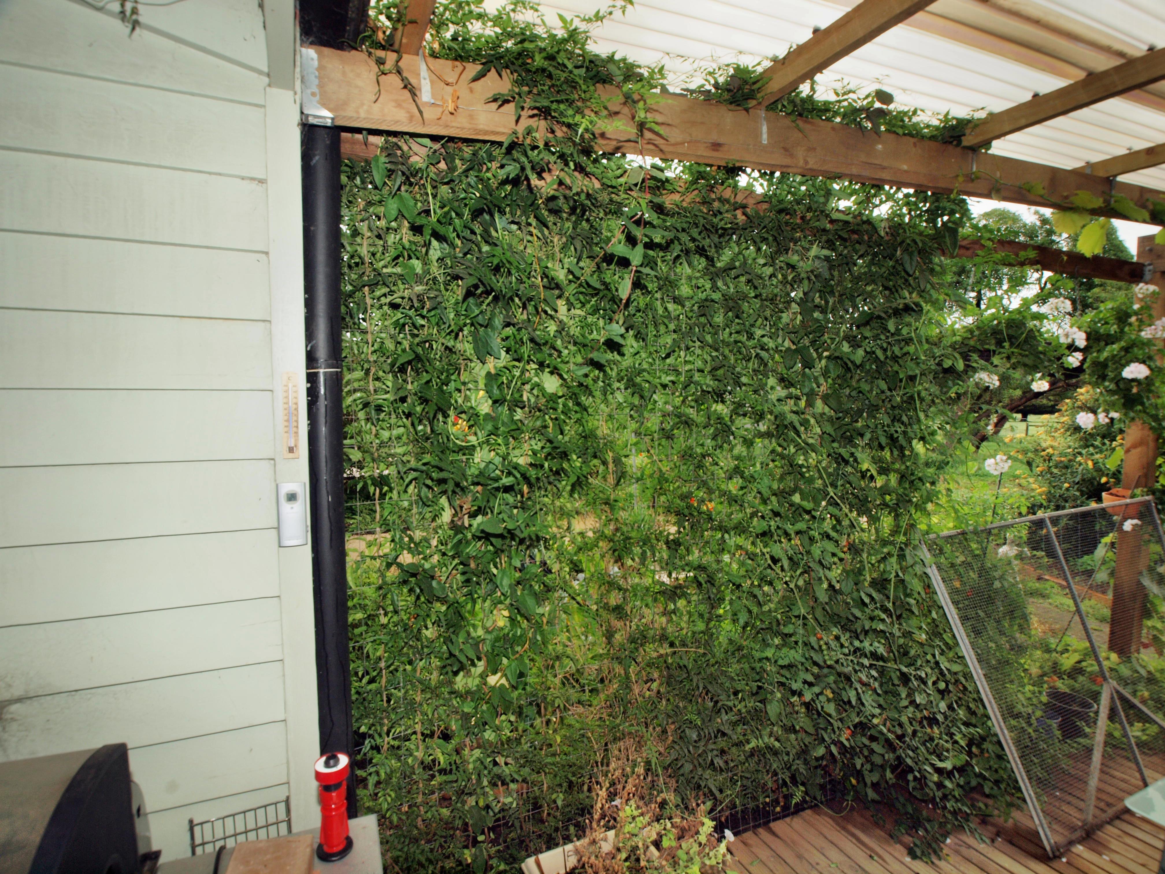 This should be verandah-1.jpeg.  Is it missing?