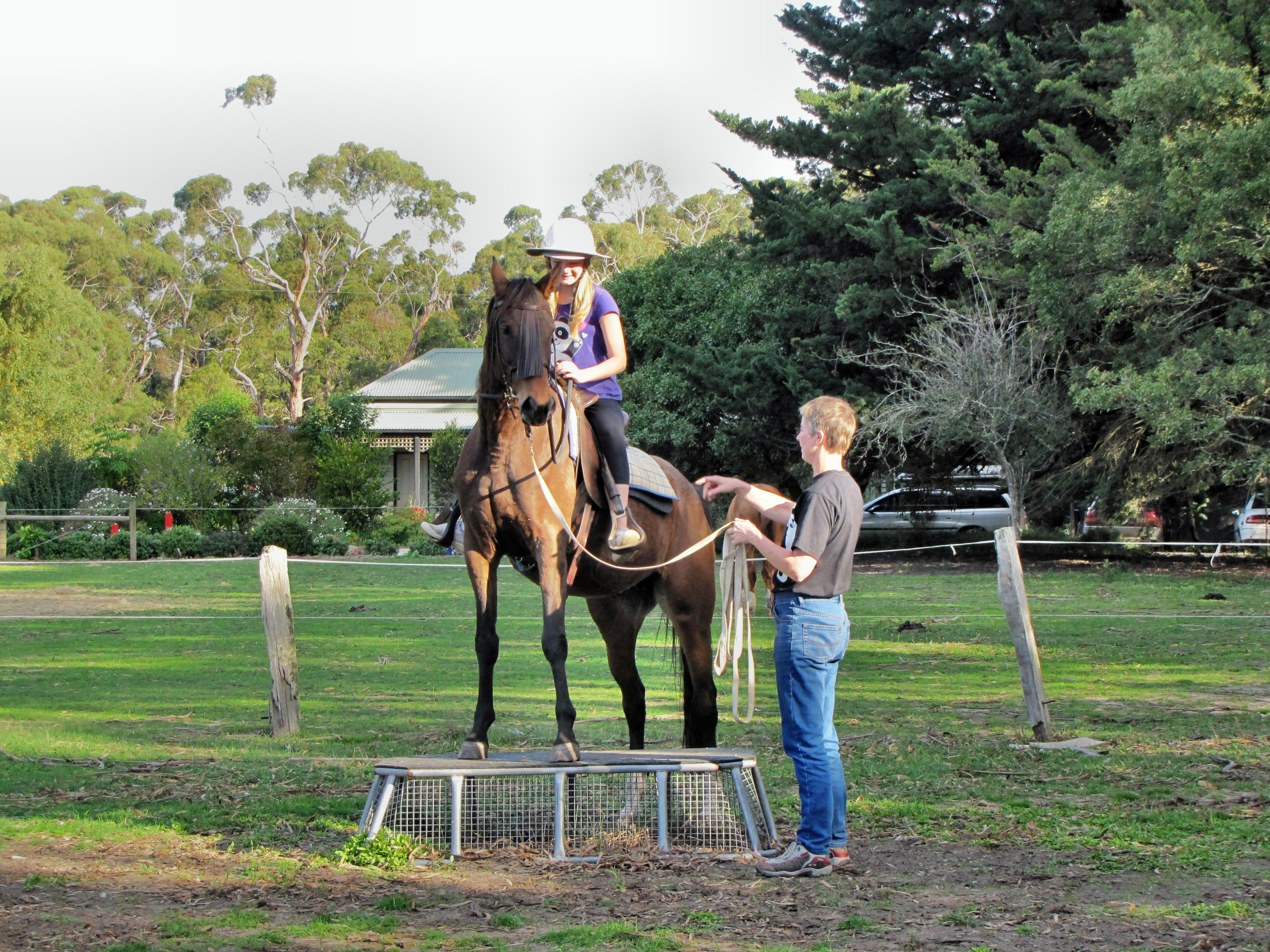 Horse-riding-7.jpeg