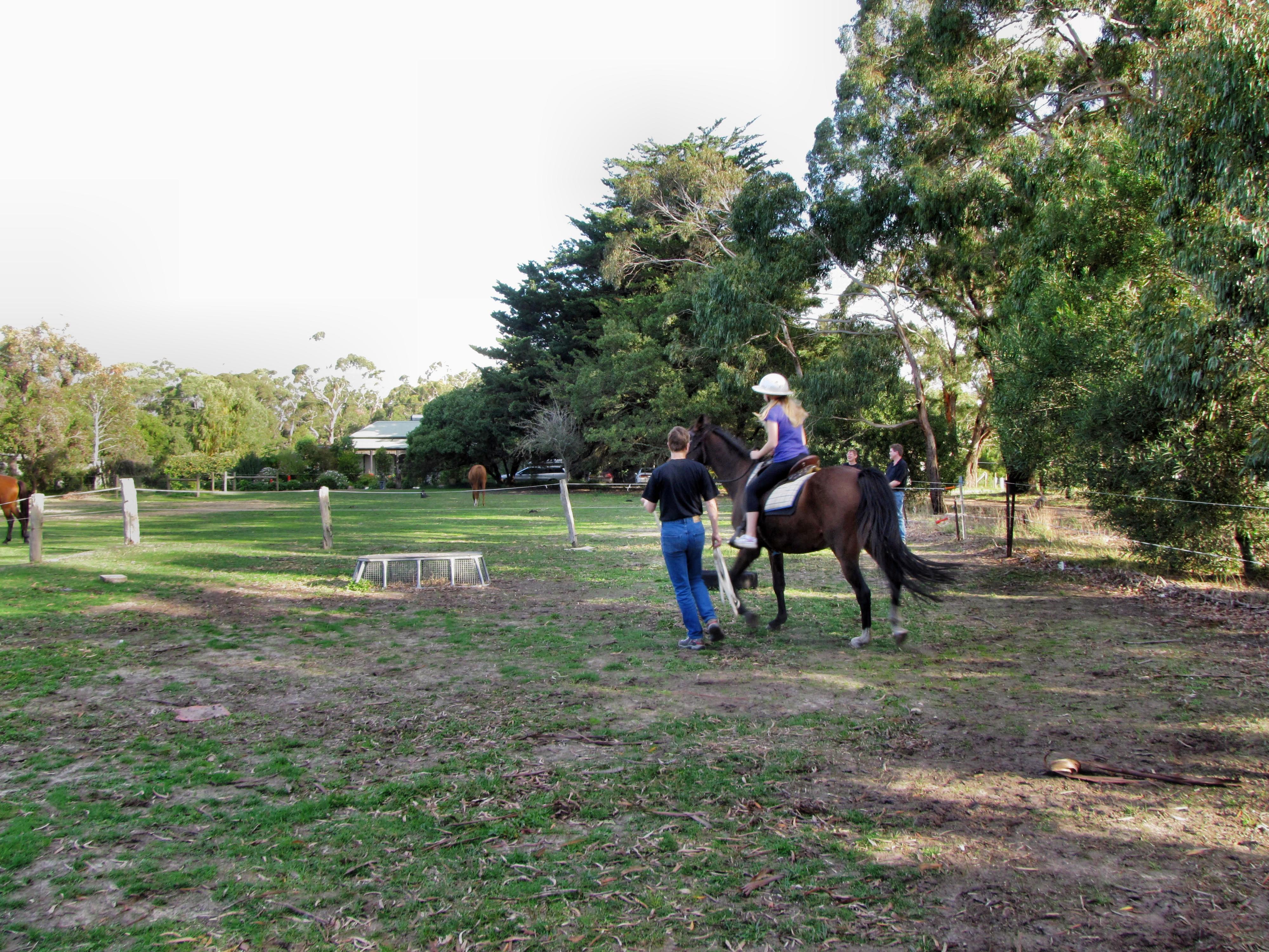 Horse-riding-9.jpeg