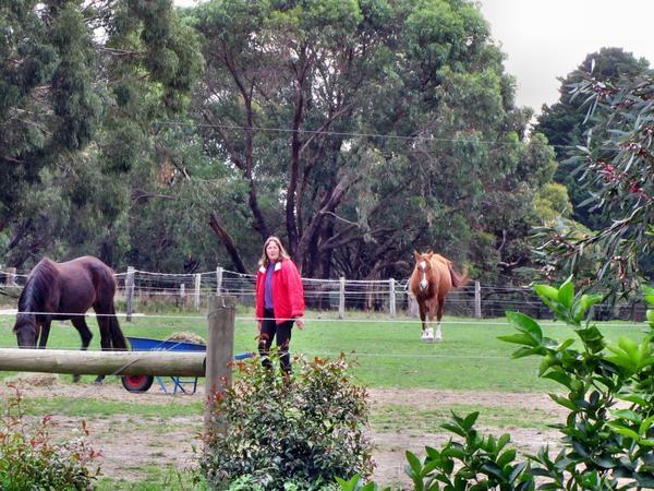 Yvonne-and-horses-1.jpeg