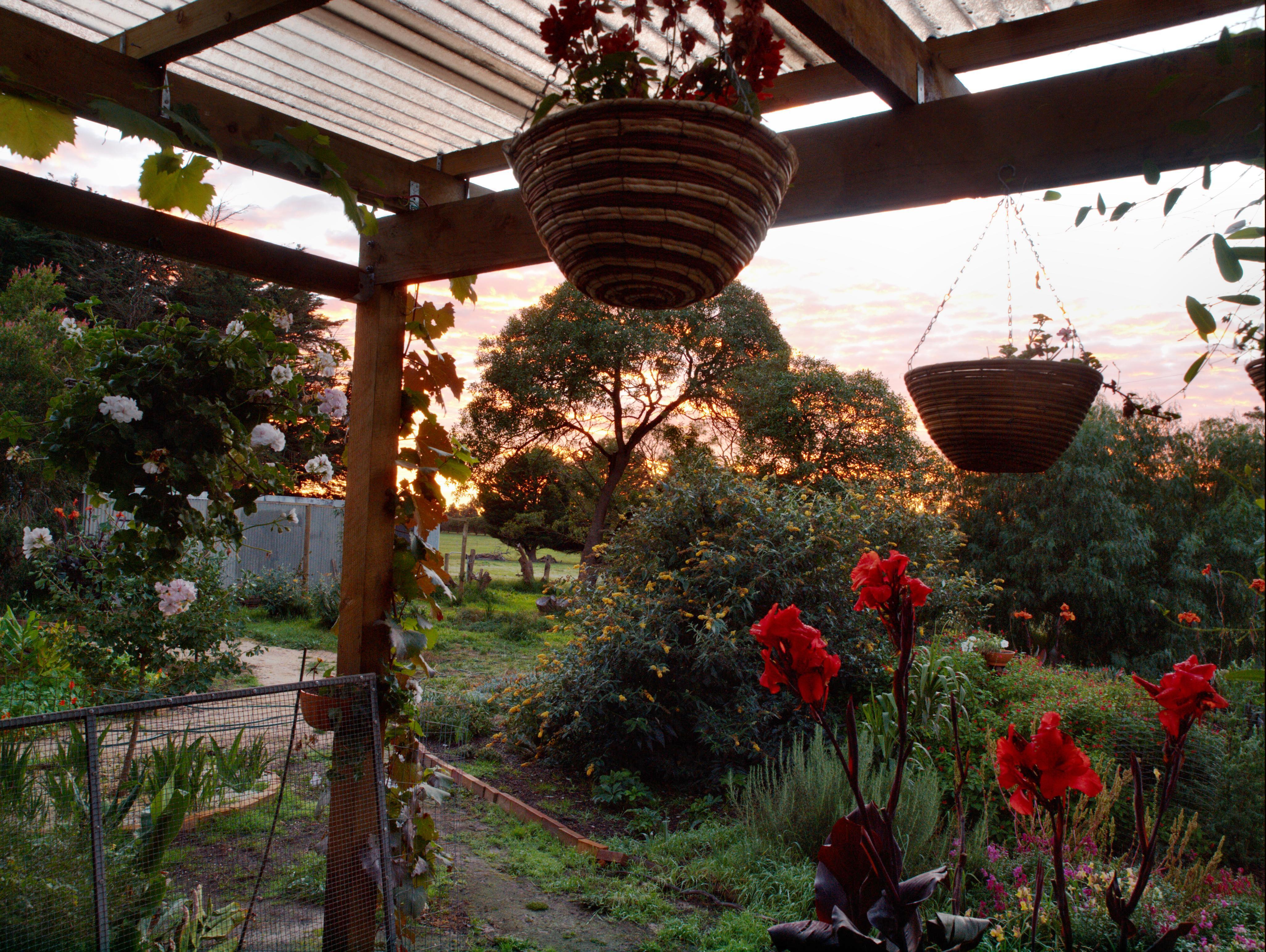 Sunrise-2.jpeg