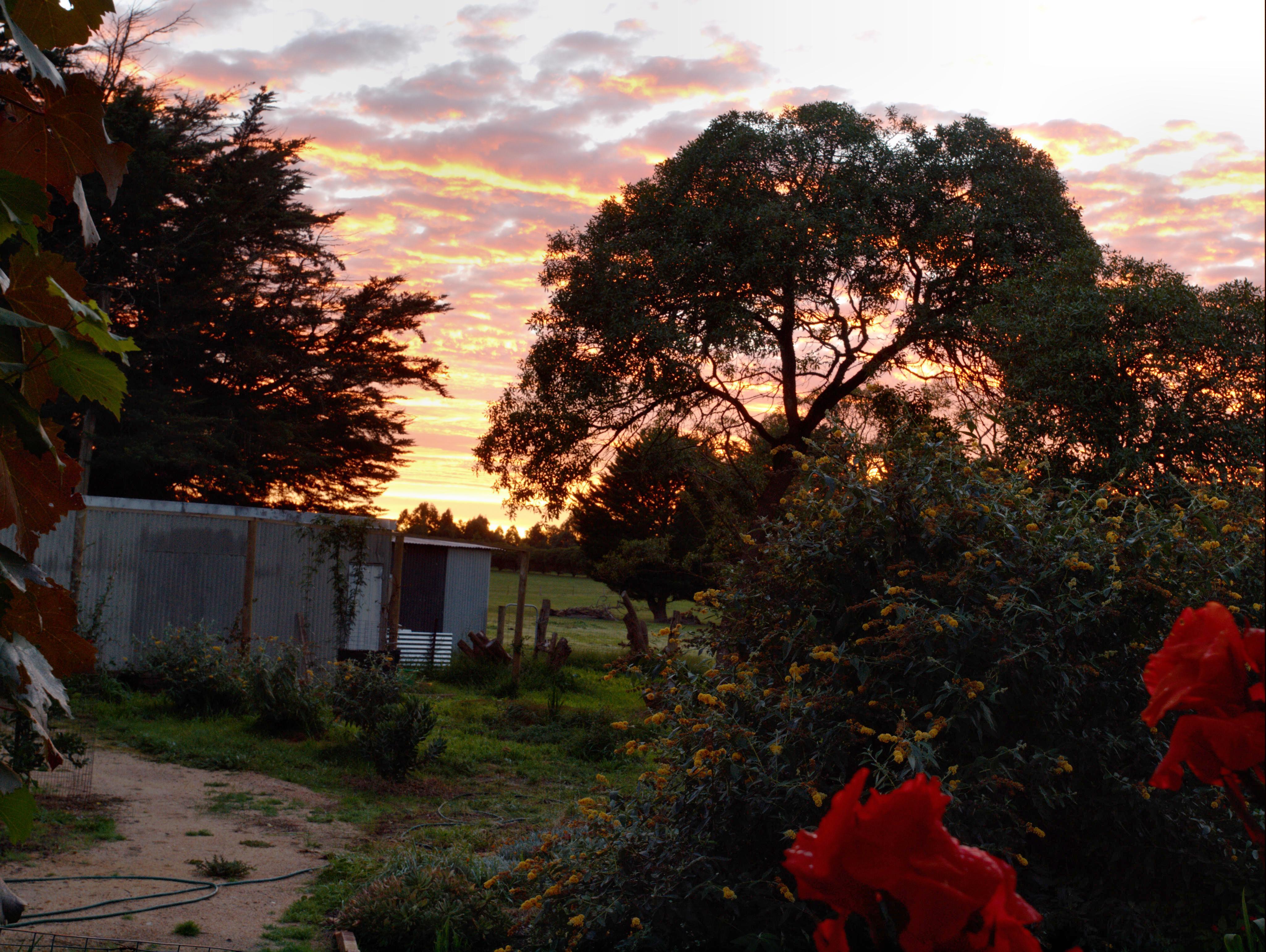 Sunrise-3.jpeg