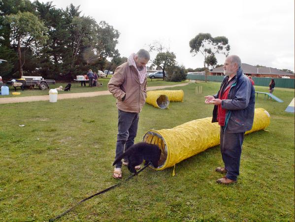 dog-training-68.jpeg