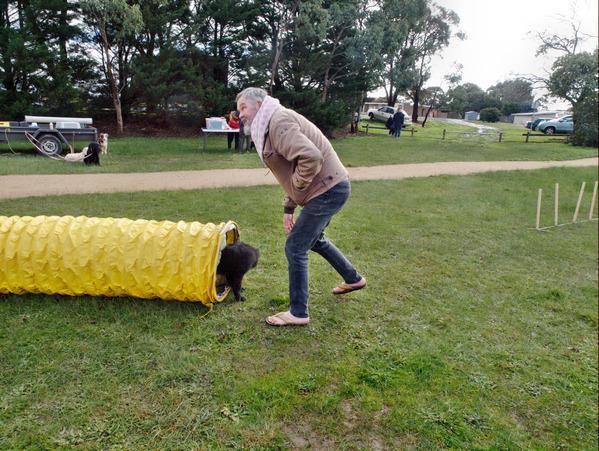 dog-training-75.jpeg