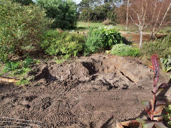 Garden-after-1.jpeg