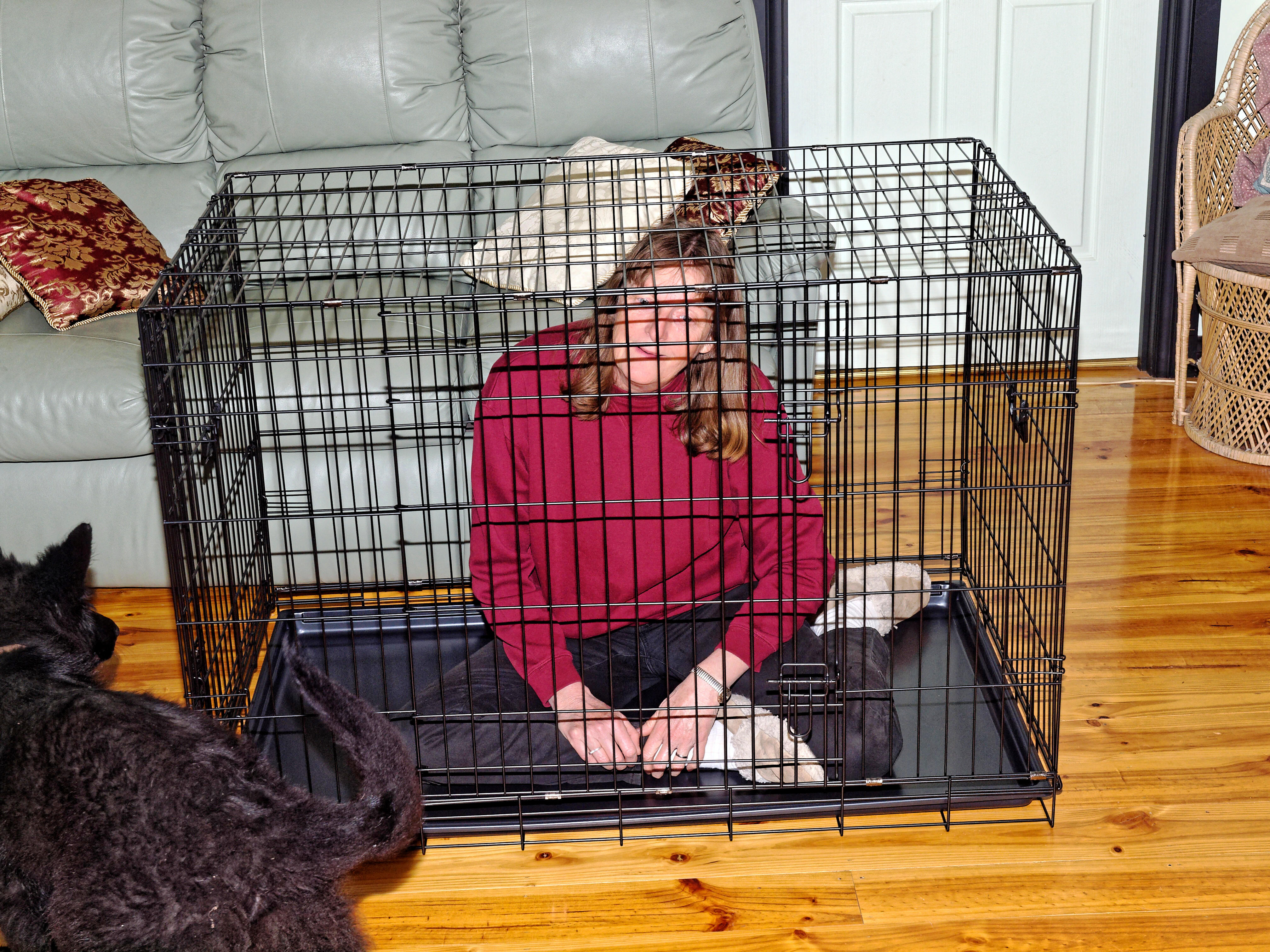 Cage-1.jpeg