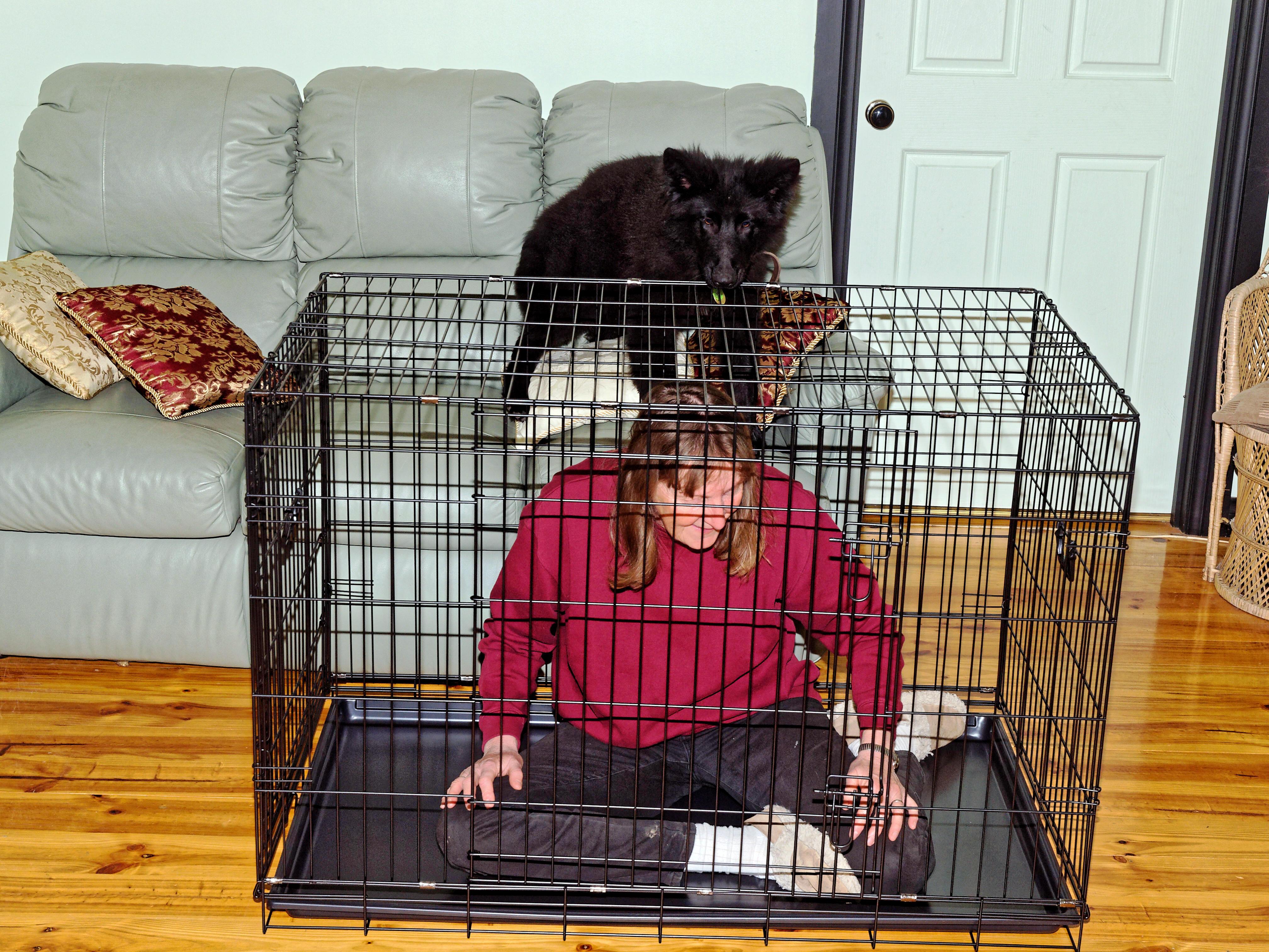 Cage-2.jpeg
