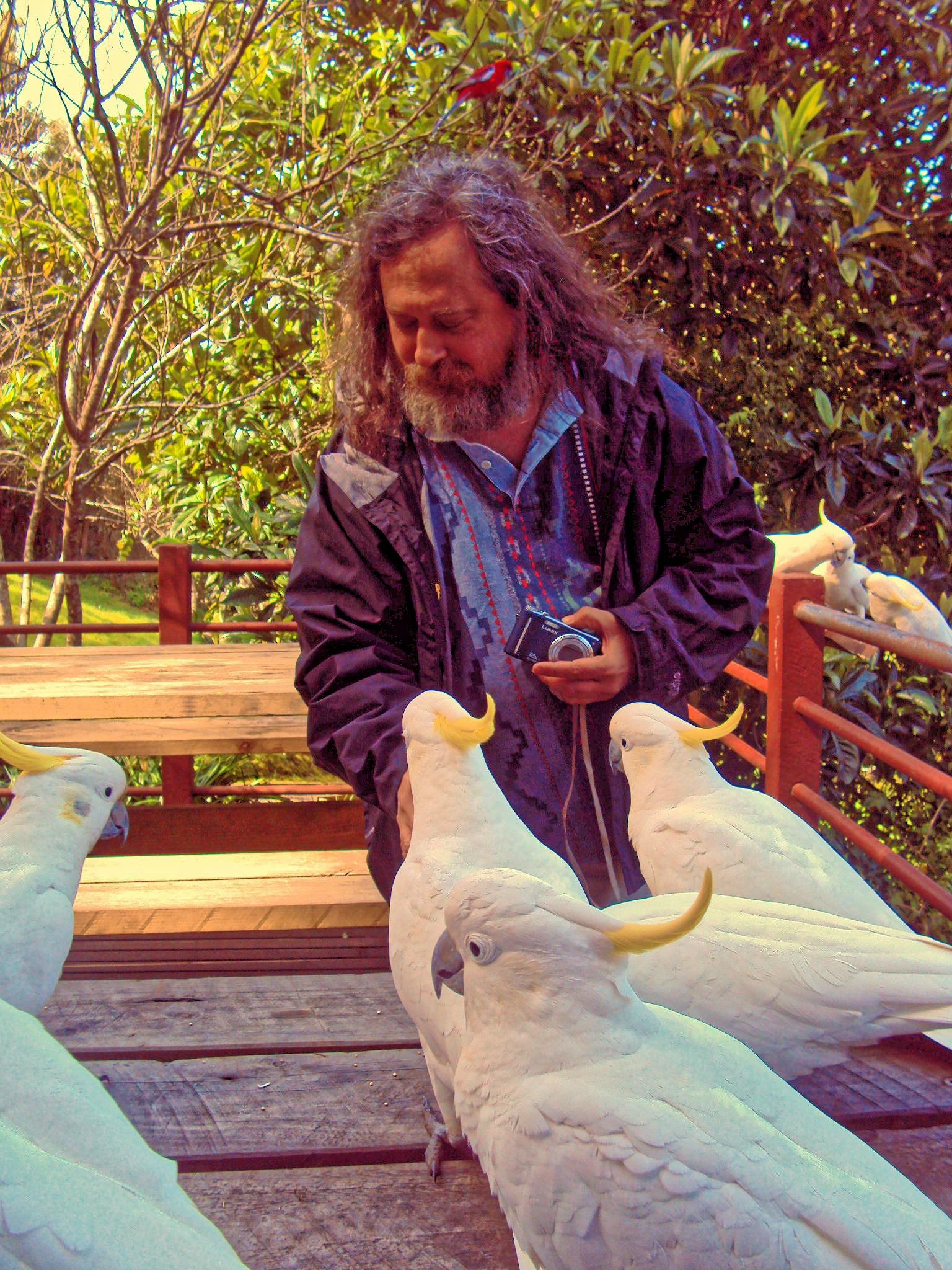 rms-and-birds-3.jpeg