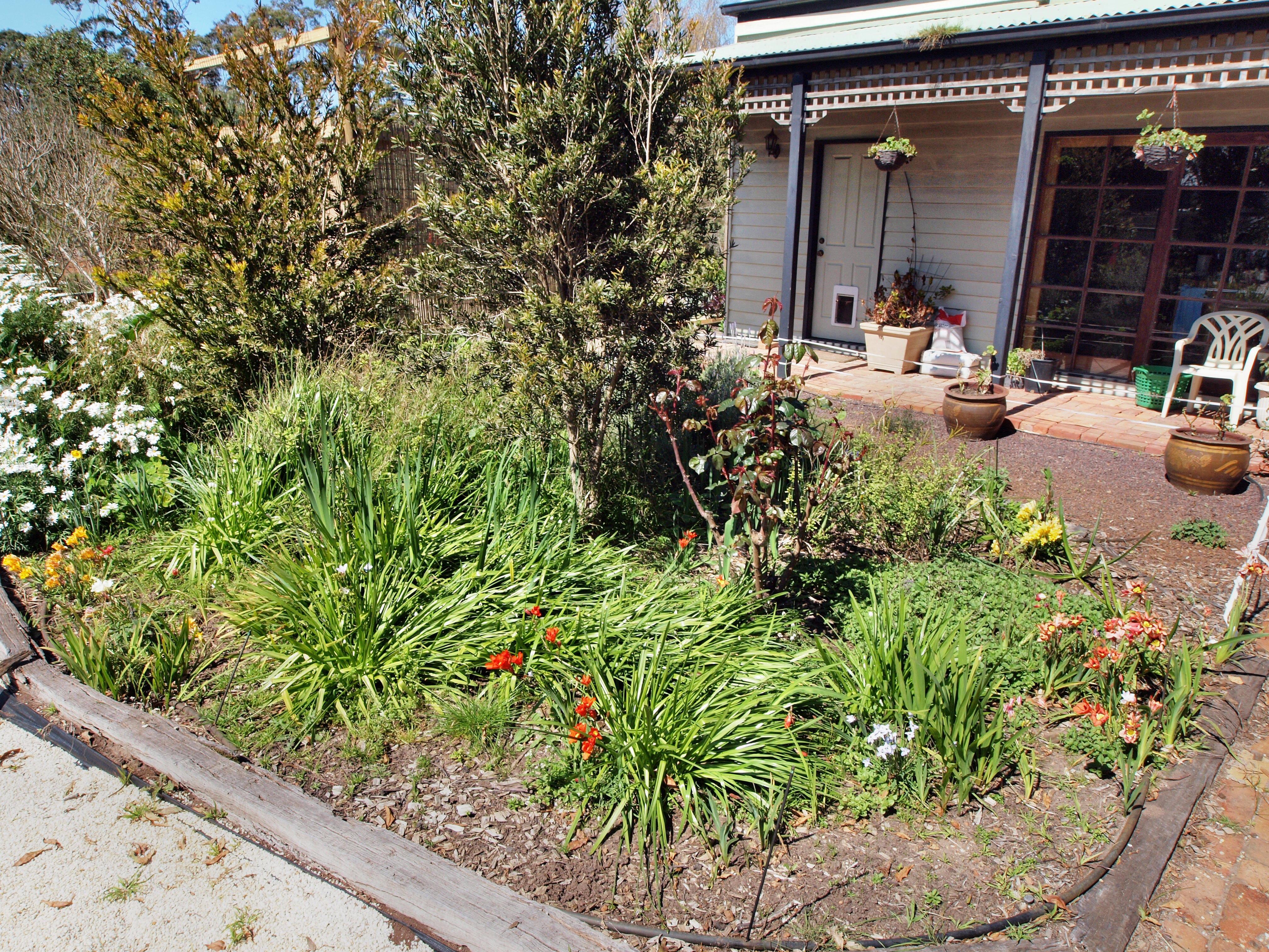 Garden-ne-4.jpeg