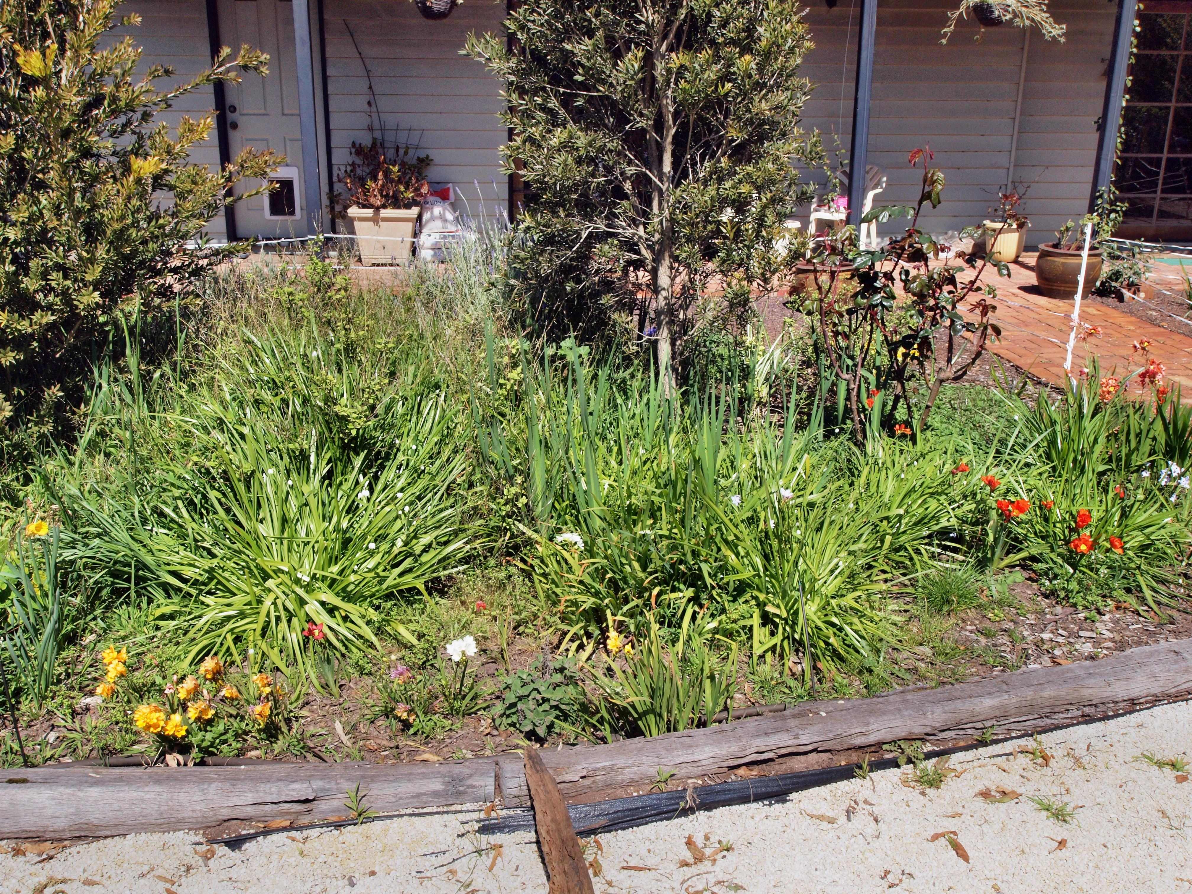 Garden-ne-5.jpeg