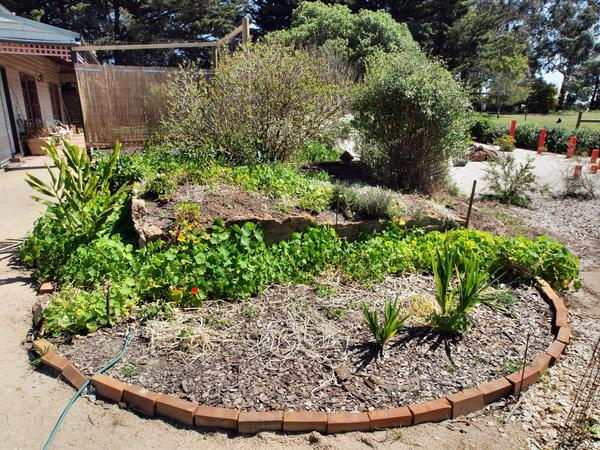 Bunker-garden.jpeg
