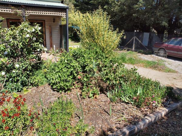 Garden-nw-2.jpeg
