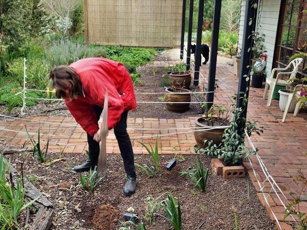 Yvonne-gardening-1.jpeg